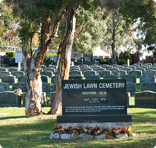 Rookwood cemetery au search online issue on gambling
